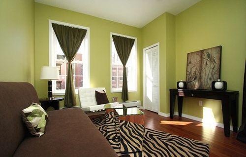 зеленые стены и темные шторы