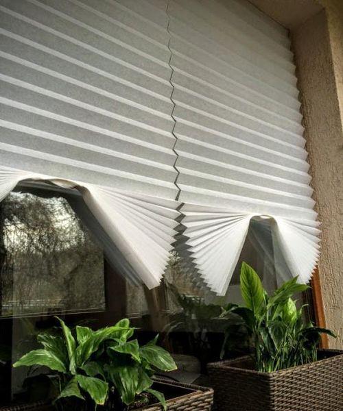 Шоттис на окне